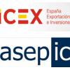 Internacionalizacion de la Empresa Espanola